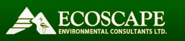 Ecoscape Environmental Consultants Ltd
