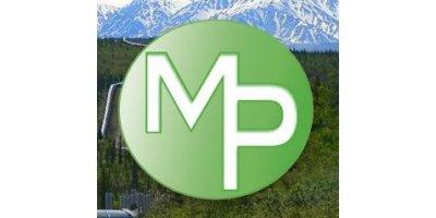 Merit Professional Services