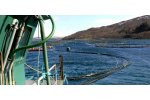 Aquaculture Project Management Services