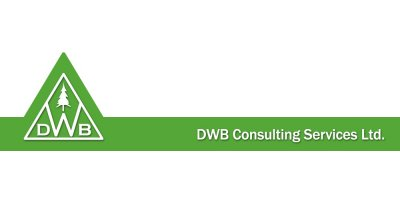 DWB Consulting Services Ltd