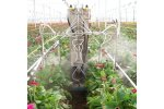 Pieton Crop Protection
