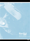 Blue Bird Company Profile - Brochure