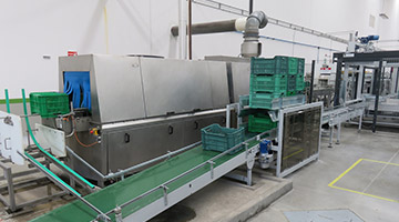 Richel - Sorting and Packaging Conveyor belt