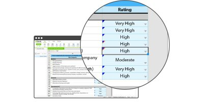Audit Risk Assessments Software