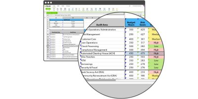 Audit Scoping and Planning Software