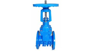 Model DN40-600 - Rising Stem Gate Valve