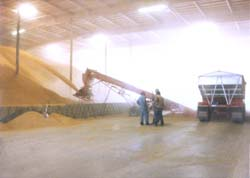 Stockpiling/Bulk Handling Equipment-2