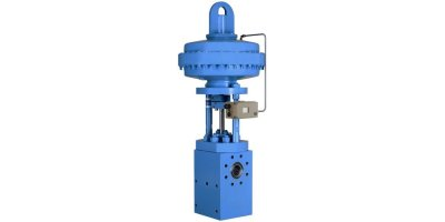 Model VNG - Angle Control Valves