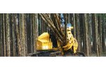 Tigercat - Model 5000 - Bunching Saw Heads