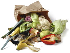 Waste compaction for the depackaging systems for food waste industry - Food and Beverage - Food