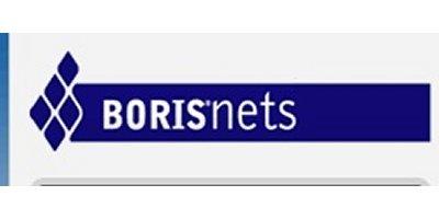 Boris Net Co Ltd.