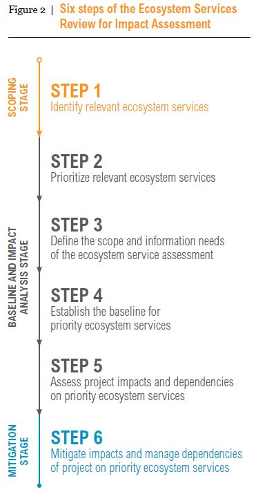Weaving ecosystem services into impact assessment: A step-by-step method