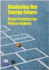 Analysing Our Energy Futrue Some Pointers for Policy-Maker