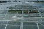 Westbrook - Model Venlo - Glass Greenhouses