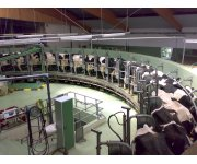 MPs Respond to Invitation to Tour a Dairy Farm