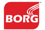 BORG Energy India (P) Ltd