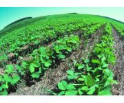 Practical benefits of sustainable soil management
