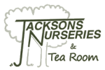 Jacksons Nurseries & Tea Room