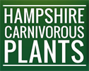 Hampshire Carnivorous Plants