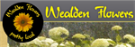 Wealden Flowers