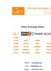 All Cation Exchange Resins -- Felite Resin Technology Co.,ltd