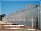 Polyethylene Greenhouse Covering
