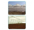 Natural Ventilated Greenhouse Construction Services