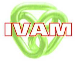 IVAM Research and Consultancy on Sustainability