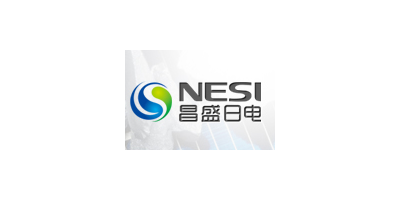 New Energy Solutions Inc. (NESI)