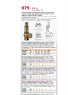 Model 079 - PN 25 - Safety/Limiting Relief Valves- Brochure