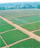 T-L Linear Irrigation Systems