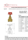 102T - Brass Gate Valve Brochure