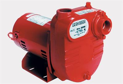 Red Lion - Cast Iron Surface Effluent Pumps