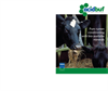 AcidBuf - Pure Rumen Conditioning Brochure