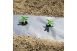 Planters Paper Mulch