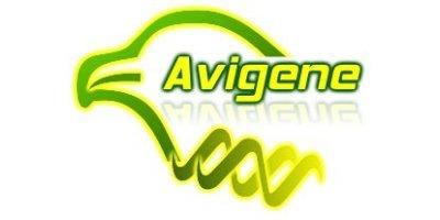 Avigene Technologies
