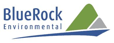BlueRock Environmental Ltd