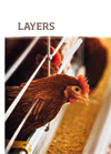 Layers Brochure