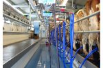 PANORAMA - Swing Arm Milking Parlours