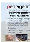 Dairy Feed Additive Flyer Brochure