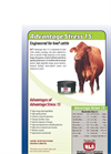 HLS - Model 15 - Advantage Stress Datasheet