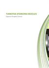 TURBOTAK Atomizing Nozzles