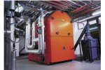 MAWERA - Model FU RIA Series - Biomass Boiler with a Double Grate Underfeed Stoker