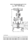 Wedge Gate Valve Brochure