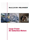 Large Frame AC Induction Motors - Brochure