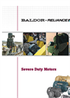 Severe Duty Motors - Brochure