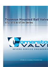 Model EE3 / ES3 - End Entry Trunnion Mounted Ball Valve Brochure