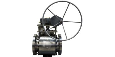 Model EE3 / ES3 - End Entry Trunnion Mounted Ball Valve