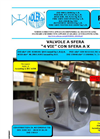 Model RT7 - 4 Way Ball Valve Brochure