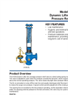 Dynamic Lifter - Model A106-DL - Spring Pressure Relief Valve Brochure